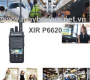 Nhà phân phối P6620 0904535797